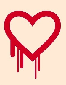 "What Does ""Heartbleed"" Mean For My Identity Security?"